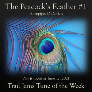 TrailJams Tune of the Week: The Peacock's Feather #1. Hornpipe, D Dorian. Play it together June 17, 2021.